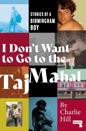 'Between Misery and the Sun': I Don't Want to Go to the Taj Mahal, by Charlie Hill